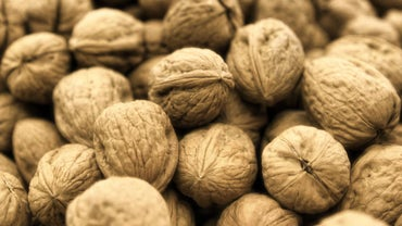 How Do You Roast Walnuts in Their Shells?