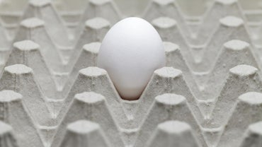 What Causes a Rotten Egg Smell in a House?