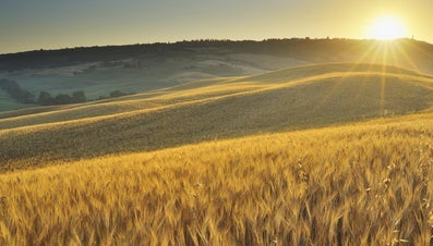 What Is Rural Depopulation?