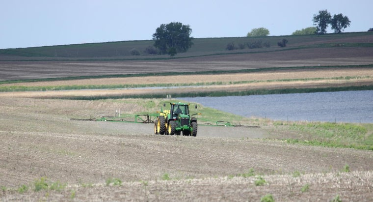 Is It Safe to Use a Grazon Herbicide?