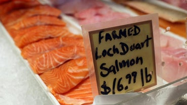 Is Salmon Fattening?