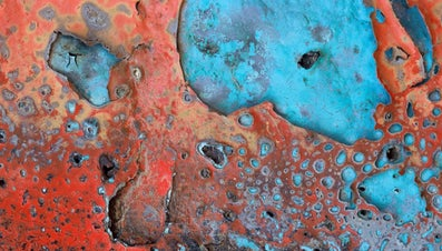 What Is the Scientific Name for Rust?