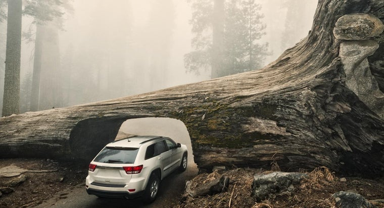 What Are Some of the Best All-Season Tires for an SUV?
