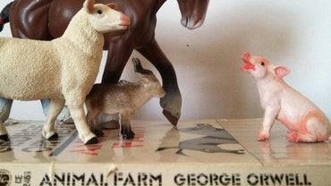 "What Is a Short Summary of ""Animal Farm"" by George Orwell?"
