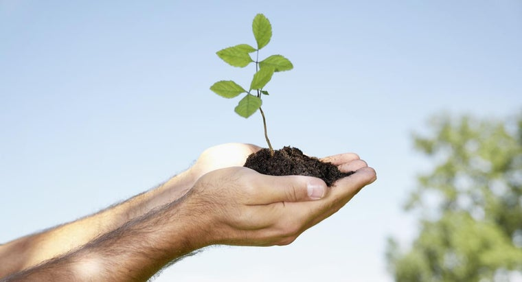 Why Is Soil Conservation Important?