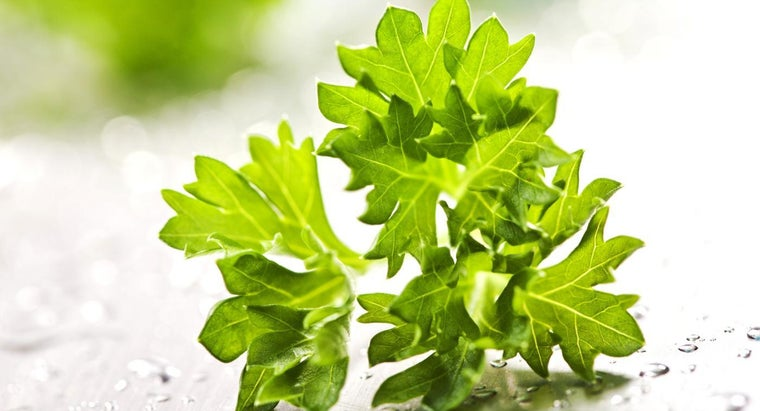What Is a Sprig of Parsley?