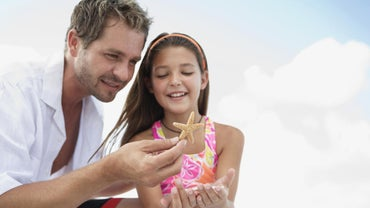 What Are Some Starfish Facts for Kids?