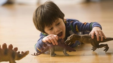 What Was the Lifespan of a Stegosaurus?