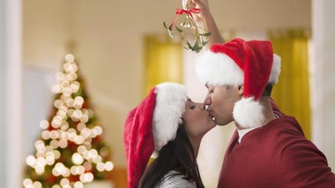 What Is the Symbiotic Relationship Between the Mistletoe and the Spruce Tree?