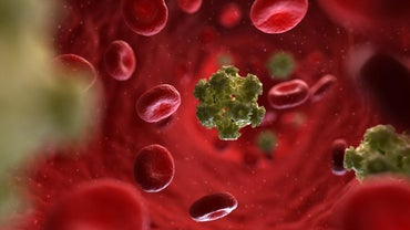 What Are the Symptoms of the HPV Virus in Women?