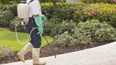 What Are the Symptoms of Pesticide Poisoning?