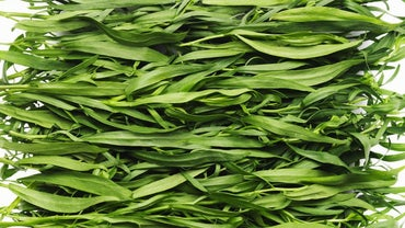 What Does Tarragon Taste Like?