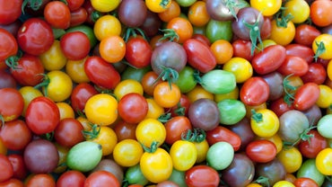 Do Tomatoes Contain Citric Acid?