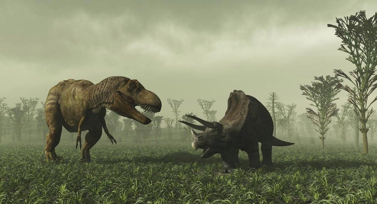 What Are the Two Classes of Dinosaurs?