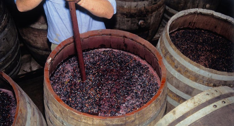 What Are the Two Main Types of Fermentation?