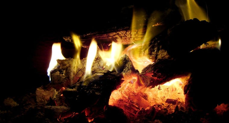 What Type of Wood Burns the Hottest?