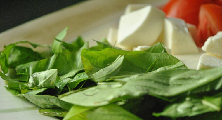 What Types of Dishes Can You Season With Fresh Basil?