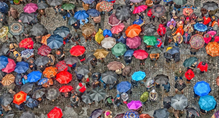 What Are Umbrellas Made Out Of?