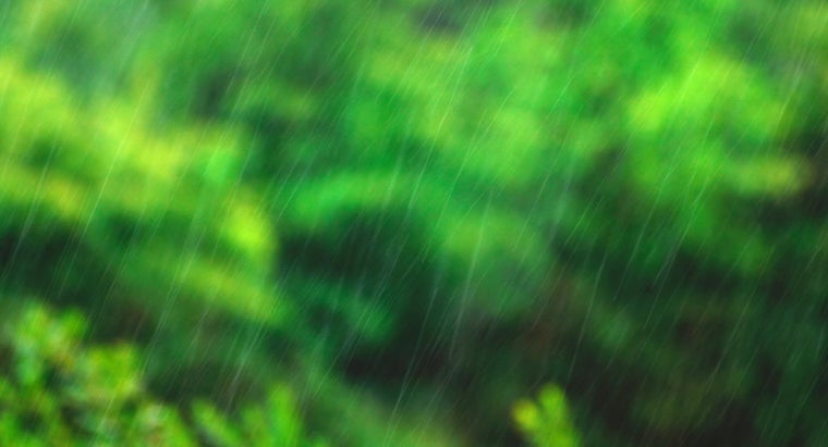 What Unit Is Used to Measure Rainfall?