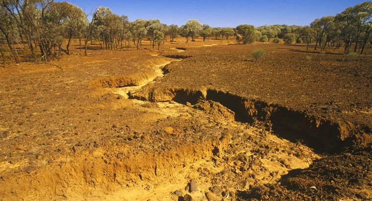 What Are Some Ways to Stop Desertification?