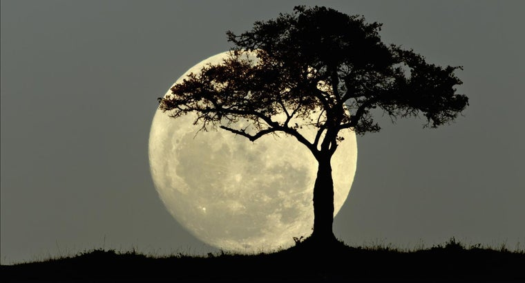 What Does the Full Moon Symbolize?