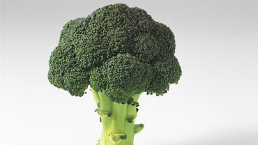 What Does Broccoli Do for Your Body?