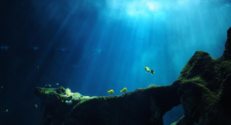 What Happens in Deep Ocean Trenches?