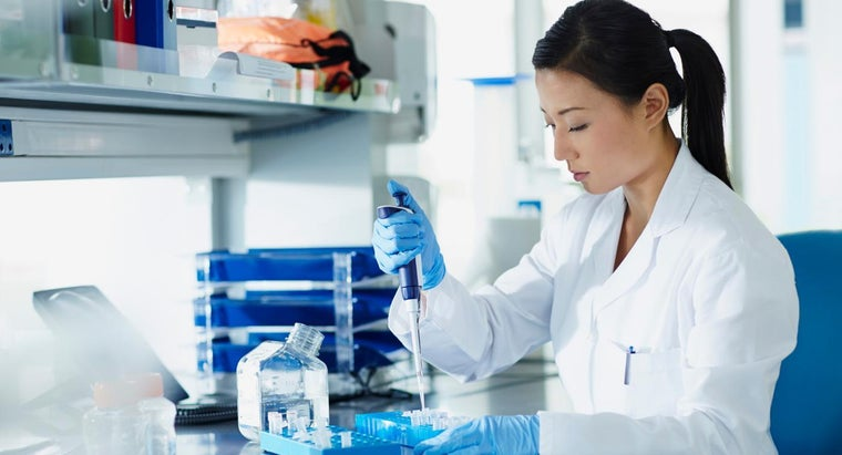 What Is a Laboratory Observation?