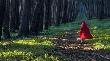 "What Is the Moral of ""Little Red Riding Hood""?"