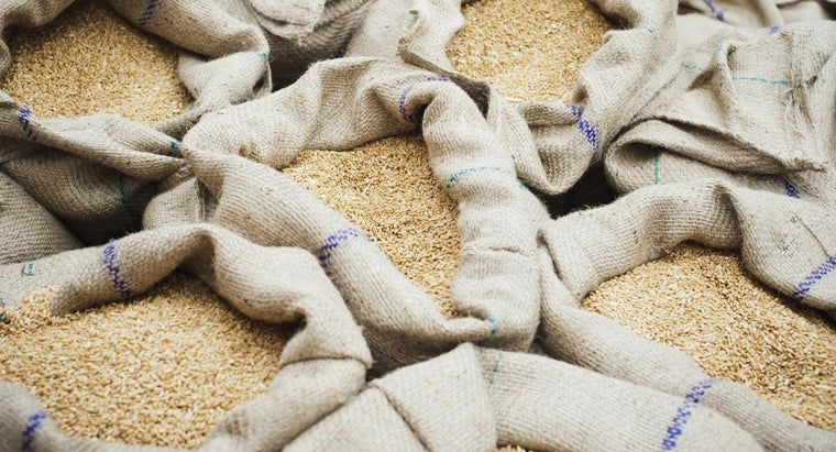What Is Wheat Starch?