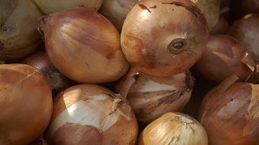 Why Does My Sweat Smell Like Onions?