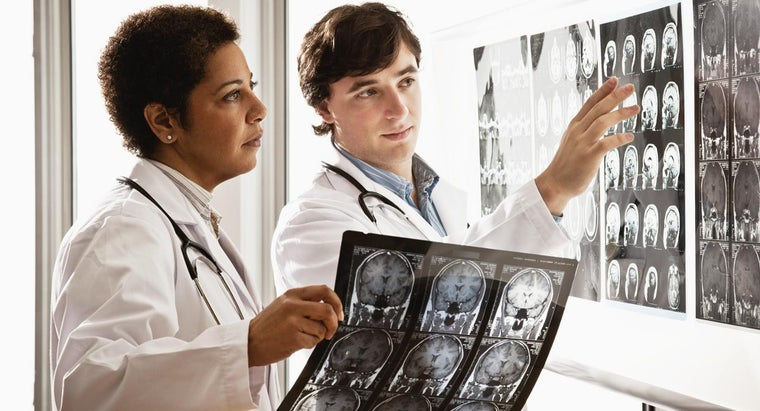 Why Is the Brain Important in the Human Body?
