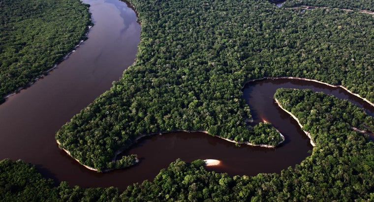 How Wide Is the Amazon River?
