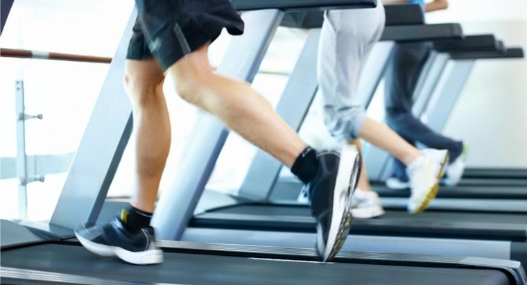 What Is the World Record for Longest Distance Run on a Treadmill?