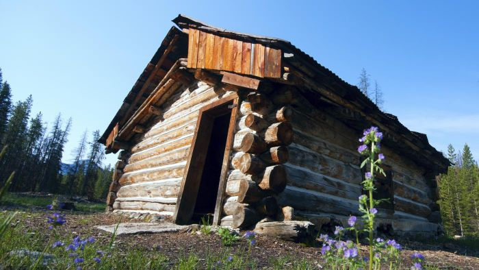 How do you find plans for square log homes?