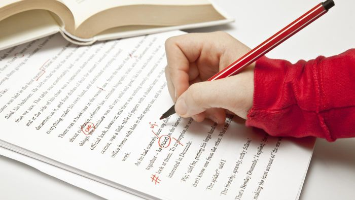 Are There Any Sources That Offer Proofreading Services Online?