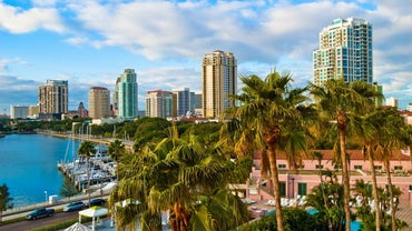 How Do You Buy Saint Petersburg, Florida, Real Estate?