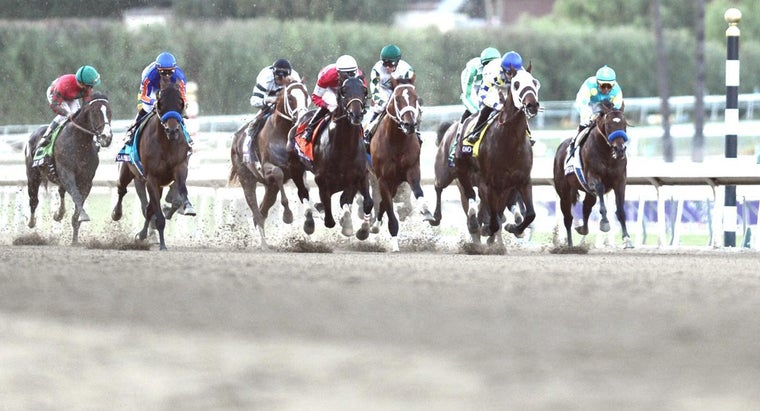 How Do You Find Past Winners of the Breeders' Cup Classic?