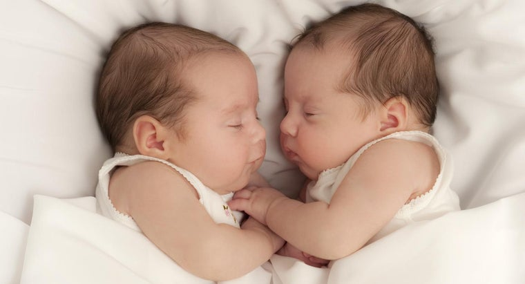 Can You Adopt Twins?
