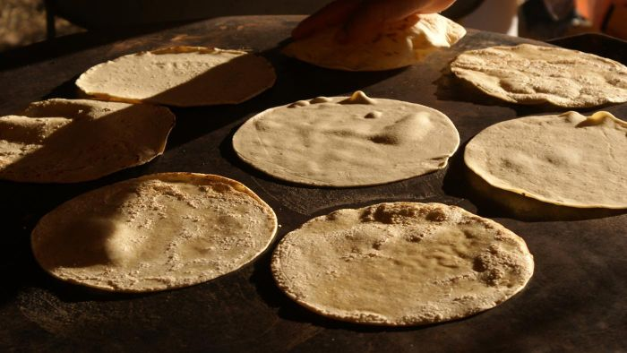 Where Can You Purchase a Commercial Tortilla Maker?