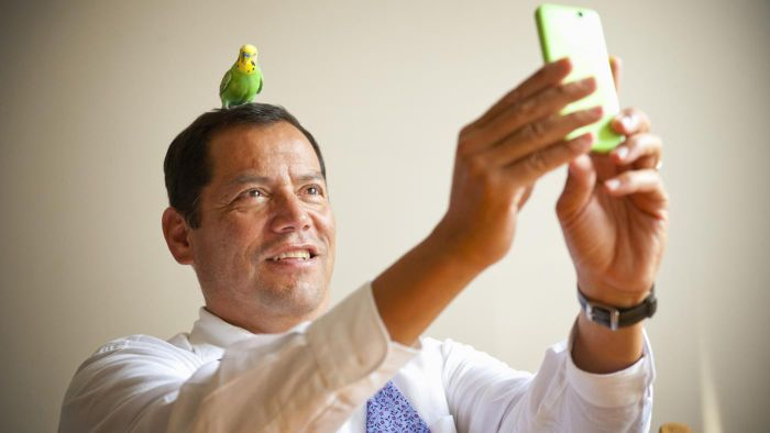 Where Can You Find Free Parrots for Adoption?