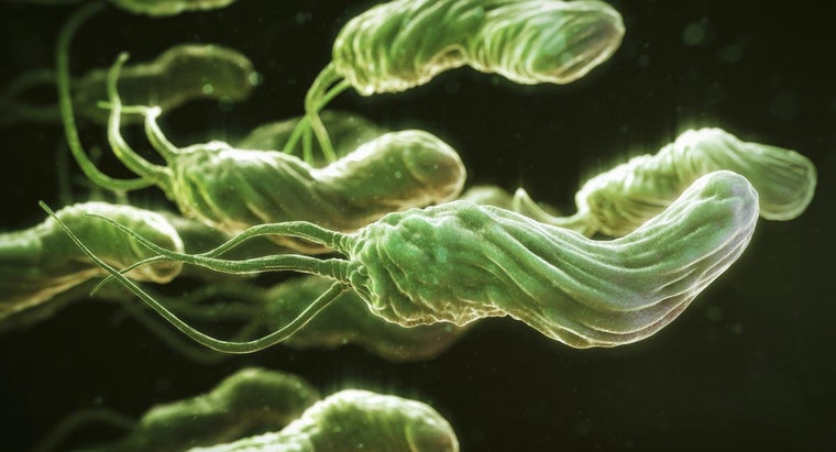 How Do You Cure H. Pylori?