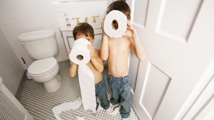 Is Charmin Toilet Paper Good?