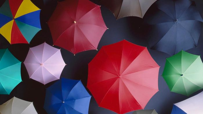 What Is an Umbrella Company?