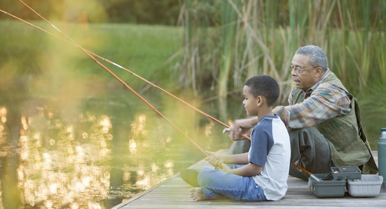 Are There Separate Fishing License Fees for Seniors?