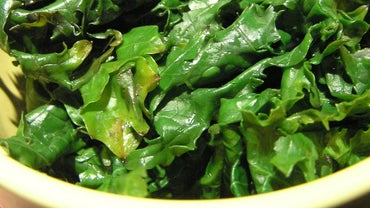 How Do You Freeze Kale Without Blanching It First?