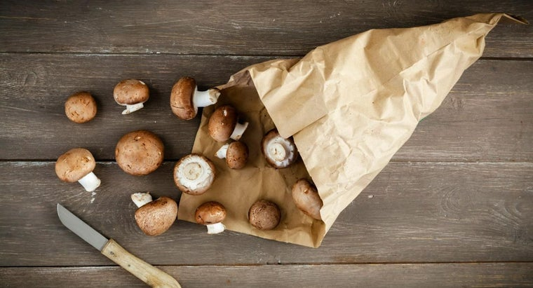 Which Mushrooms Are Edible?