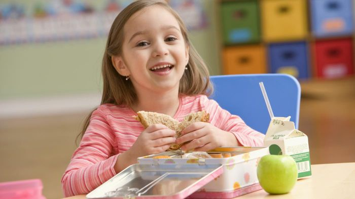 What Is a Simple Food Pyramid for Kids?