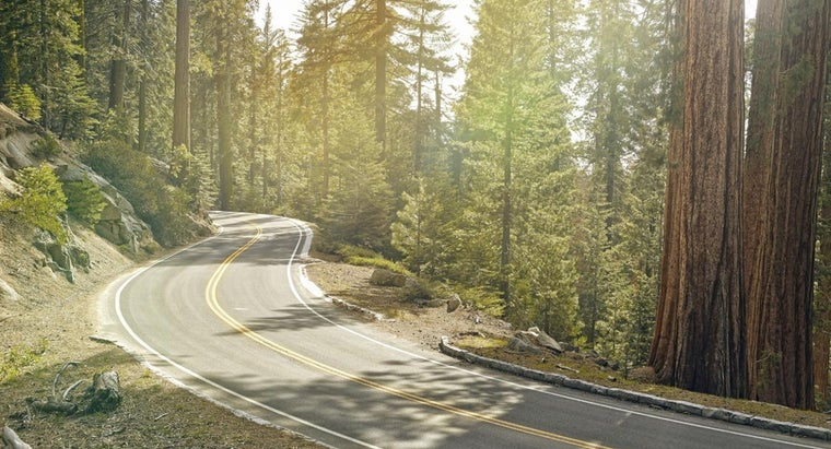 What Are Some Companies That Publish Maps of Sequoia National Park?