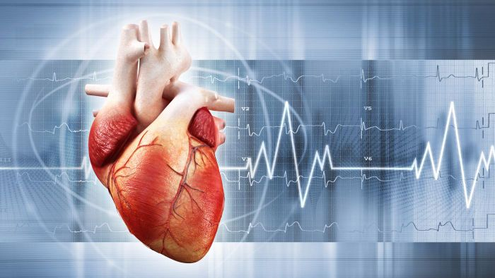 What Is a Normal Heart Ejection Fraction?